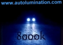 Headlights HID 8000K